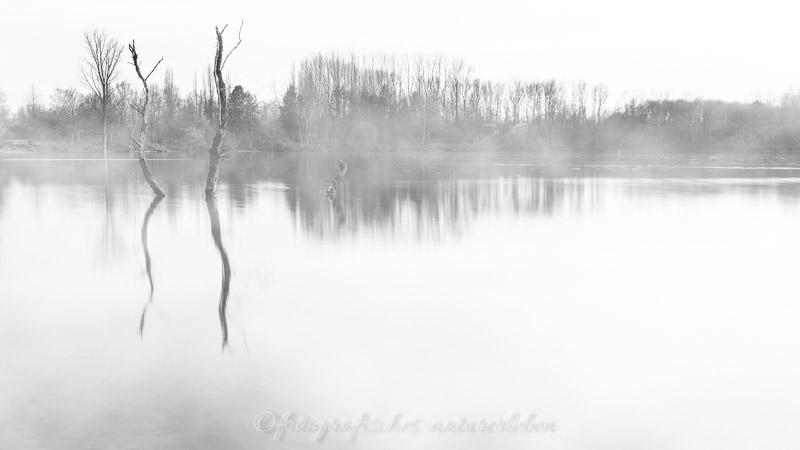 See in Nebel gehüllt