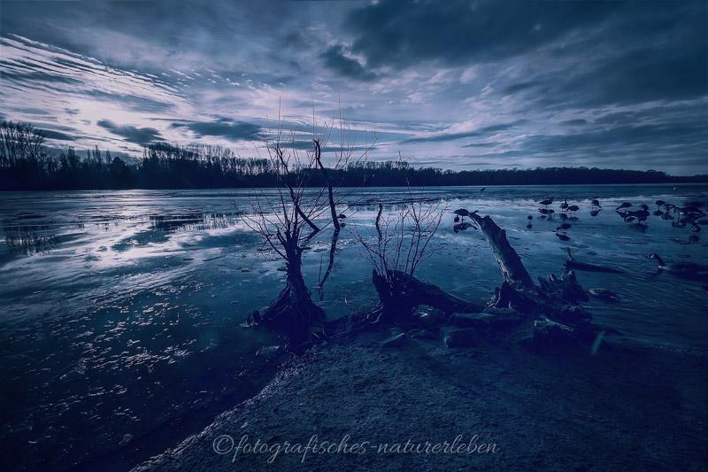 Unterbacher See gefroren im Sonnenuntergang