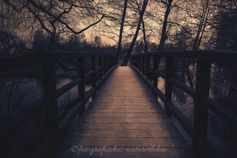 Brücke am De Wittsee